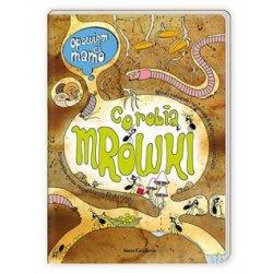 Książka Opowiem Ci mamo co robią mrówki - Wydawnictwo Nasza Księgarnia