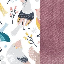 Królik Velvet, Cute birds, Lavender, La Millou