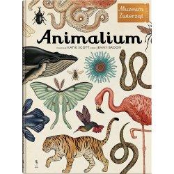 Książka Animalium Muzeum Zwierząt - Wydawnictwo Dwie Siostry