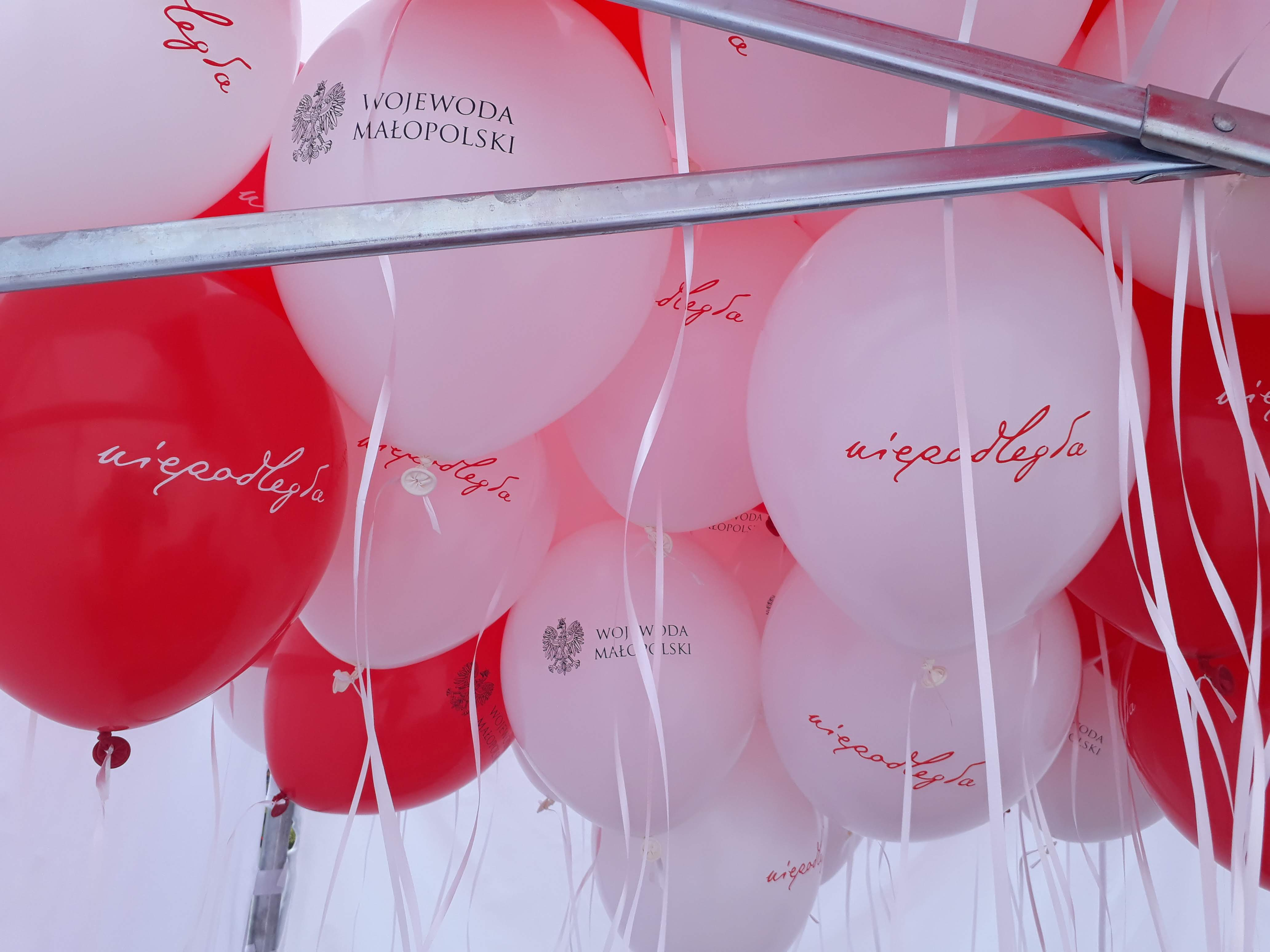 Balony z logo Wojewody Małopolskiego